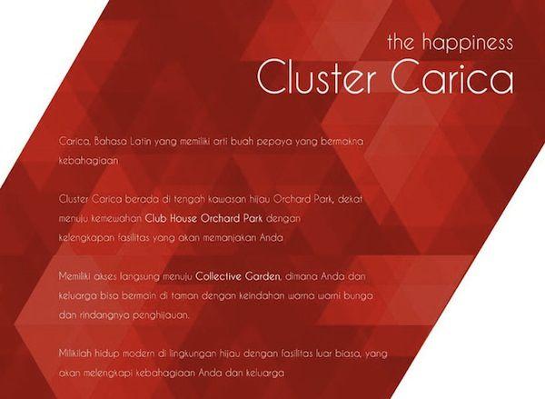 Cluster Carica Estate