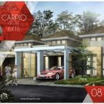 Tipe Carpio Deluxe