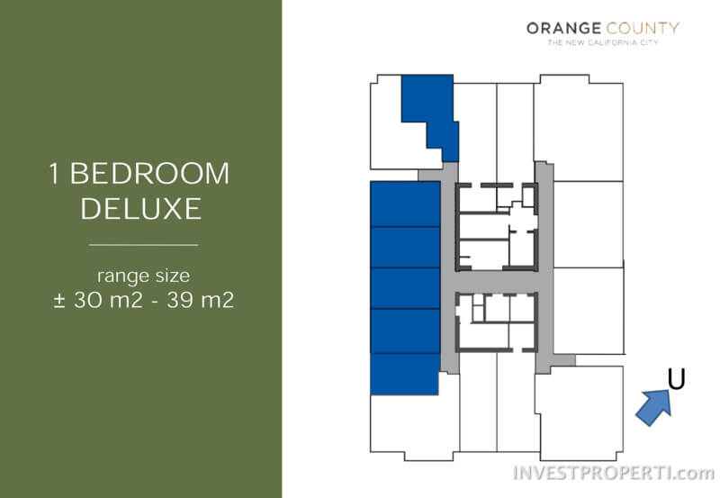 Floor Plan 1 BR Deluxe Apartment NewPort Park