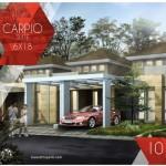 Tipe Carpio Suite