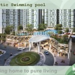 Thematic Swimming Pool