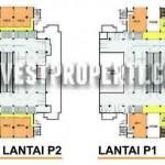 Floor Plan P1 & P2