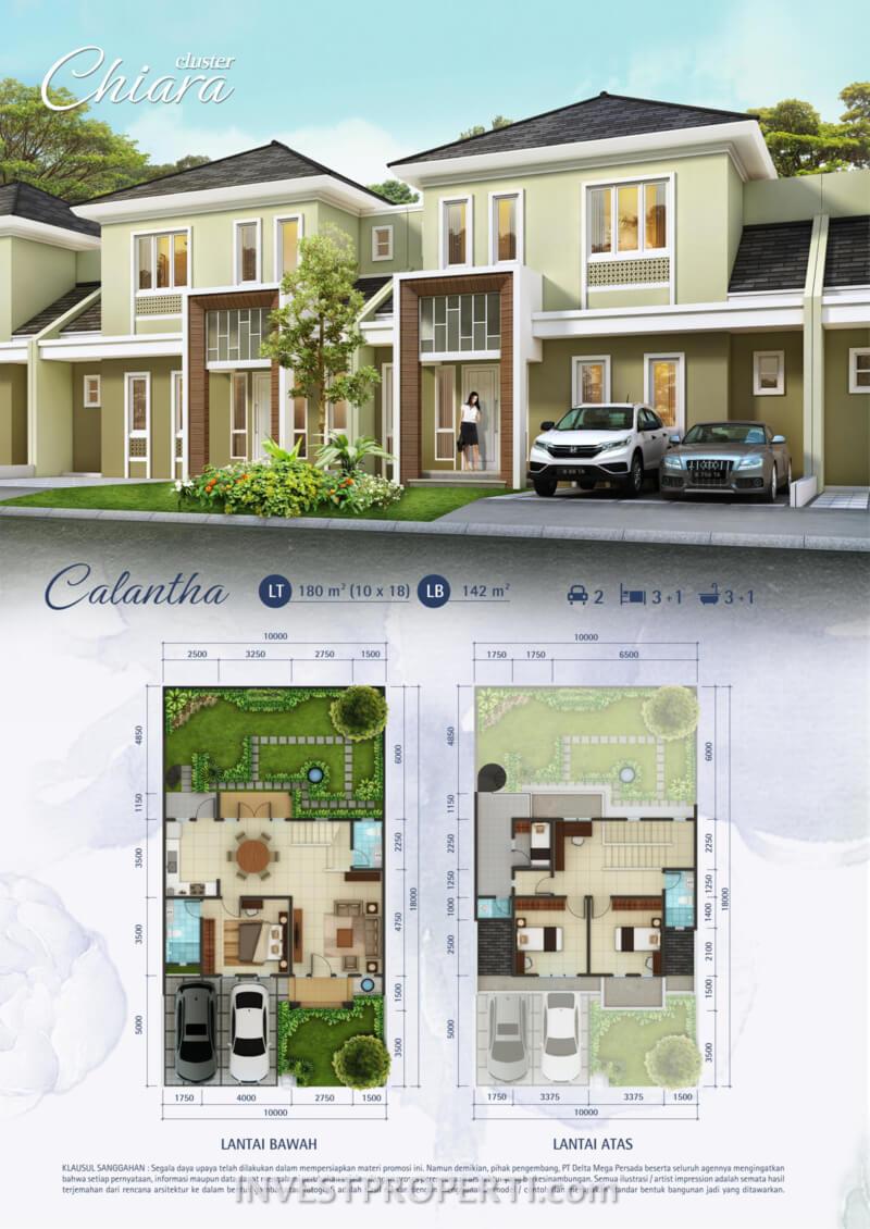 Tipe Calantha Cluster Chiara