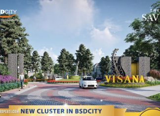 Gate Cluster Visana @ The Savia BSD