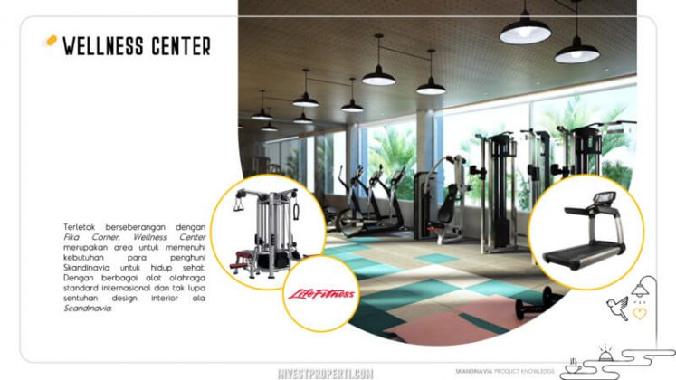 Skandinavia Apartment Fitness Center