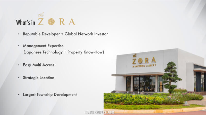 The Zora Marketing Gallery