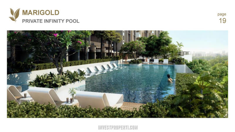 Marigold Navapark BSD Infinity Pool