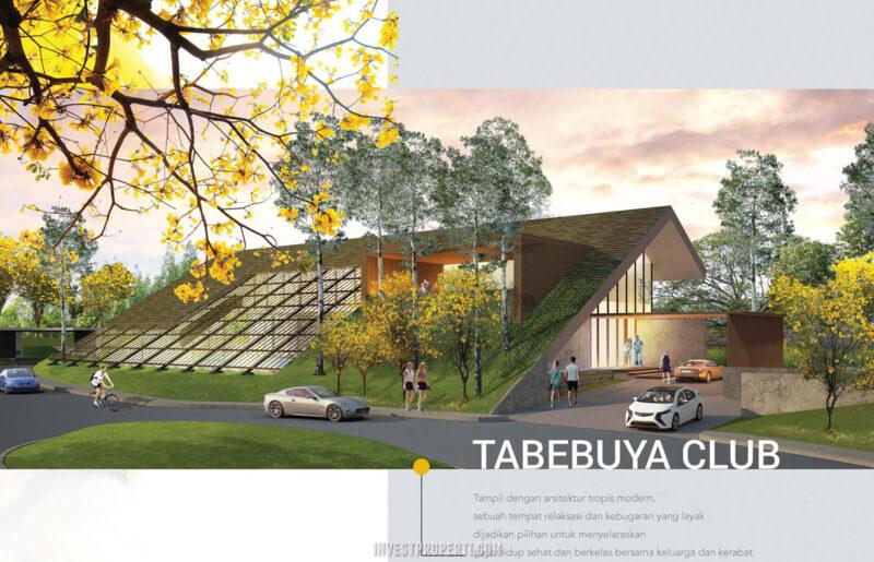 Tabebuya BSD Club