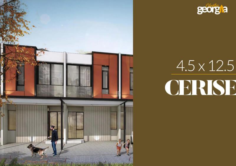 Rumah Milenial PIK2 Cluster Georgia 4.5x12.5