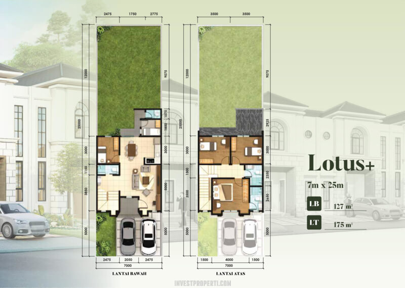 Denah Rumah Sutera Victoria Alam Sutera TIpe Lotus
